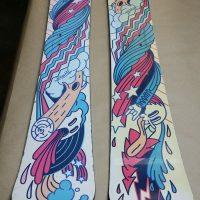 skiboards 100_1