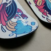 skiboards 100_2