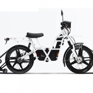 Bike_monotrack_1