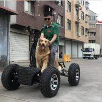 Электро квадроцикл_электро самокат_электро вездеход_EZ Raider_3